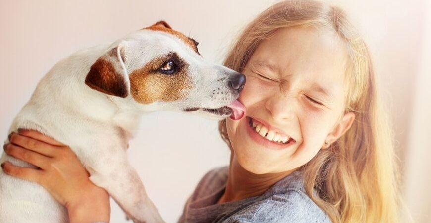 Aanschaf puppy/hond | Dierenkliniek Coppelmans